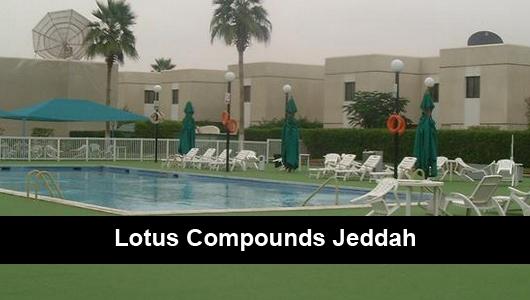 Lotus Compounds Jeddah